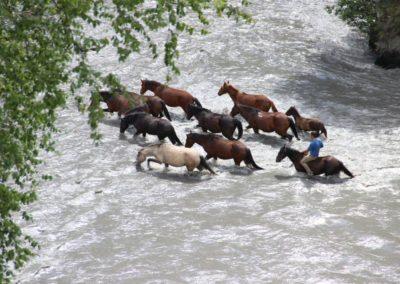 Przeprawa przez rzeke w Tuszetii